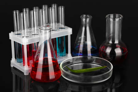 Test-tubes and green leaf tested in petri dish, isolated on black Stock Photo - 17001020