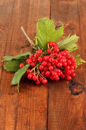 Ripe viburnum on wooden background close-up photo