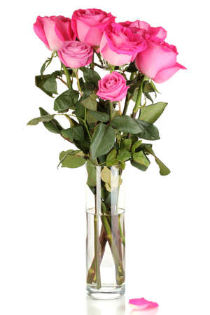 Beautiful pink roses in vase isolated on white Stock Photo - 17052639