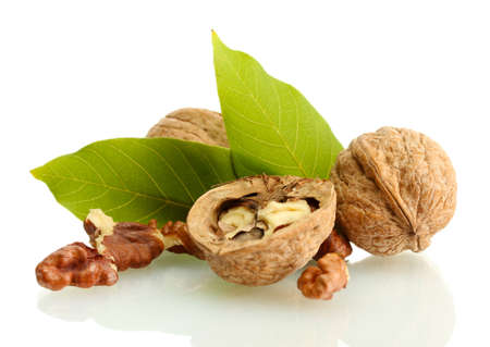 walnuts with green leaves, isolated on white photo