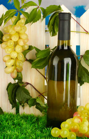 a bottle of wine on the fence background close-up Stock Photo - 17117037