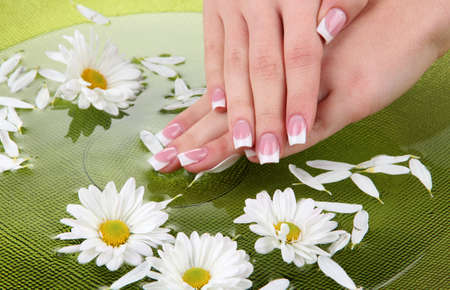 nail salon: Woman hands with french manicure and flowers in green bowl with water