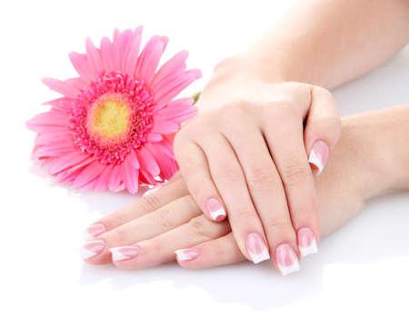 Mãos da mulher com manicure francês e flor isolada no branco