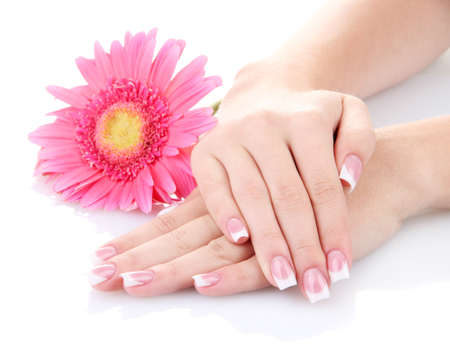 Vrouw handen met Franse manicure en bloem op wit wordt geïsoleerd