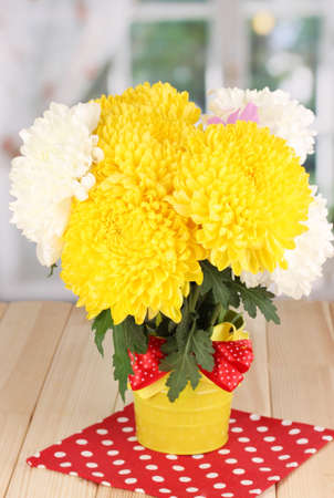 Beautiful chrysanthemum in pail on wooden table on window background Stock Photo - 17140869