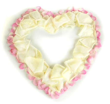 Beautiful heart of white rose petals surrounded by pink petals isolated on white photo