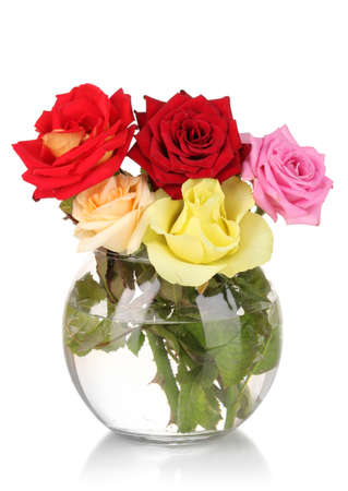 Beautiful roses in glass vase isolated on white photo