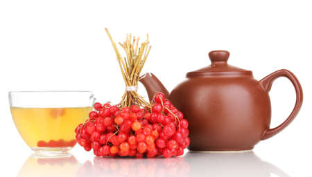 tea with red viburnum isolated on white Stock Photo