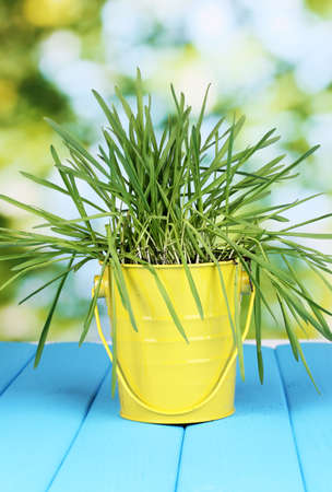 Green grass in bucket on wooden table on bright background photo