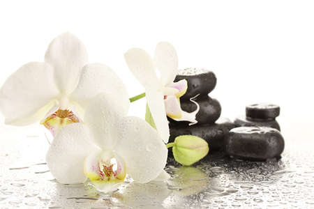 Spa stones and orchid flowers, isolated on white  photo