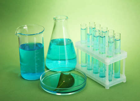 test-tubes and leaf tested in petri dish on green background Stock Photo - 17215023