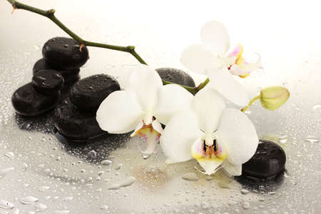 alternative medicine: Spa stones and orchid flowers, isolated on white