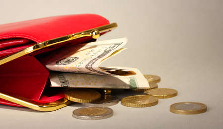 female red wallet with money on grey background Stock Photo - 17263513