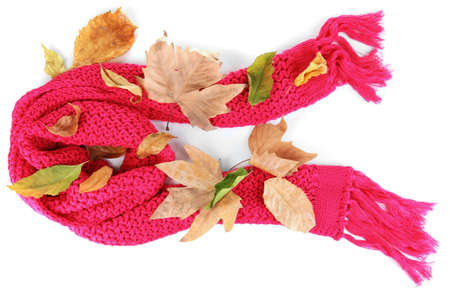 Warm knitted scarf pink with autumn foliage isolated on white photo