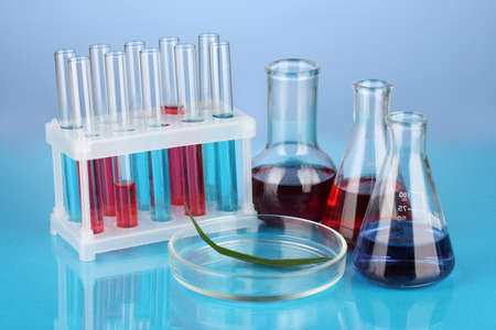 Test-tubes and green leaf tested in petri dish, on color background Stock Photo - 17291945