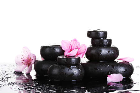 Spa stones with drops and pink sakura flowers on white background Stock Photo - 17291811