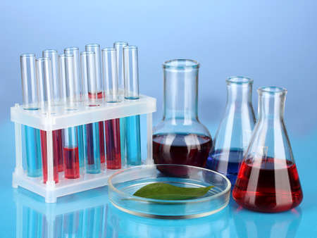 Test-tubes and green leaf tested in petri dish, on color background Stock Photo - 17348503