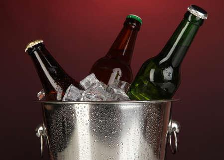 darck: Beer bottles in ice bucket on darck red background