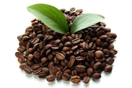 Coffee beans with leaves isolated on white Stock Photo - 17515154