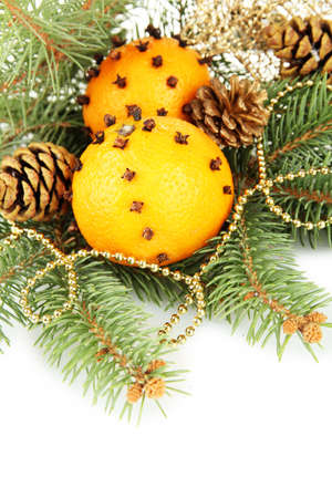 christmas composition with oranges and fir tree, isolated on white Stock Photo - 17684309