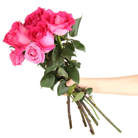 Beautiful pink roses in hand isolated on white Stock Photo - 17672860