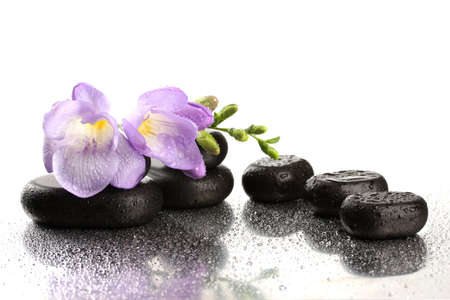 Spa stones and purple flower, isolated on white photo