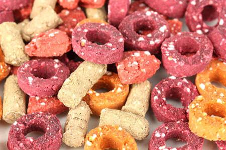 Dry dog treats close up photo