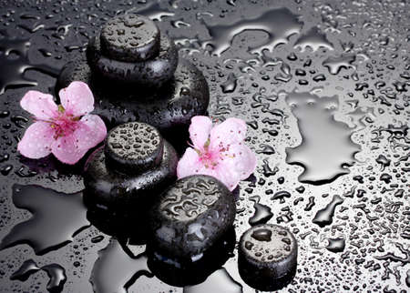 Spa stones with drops and pink sakura flowers on grey background  photo