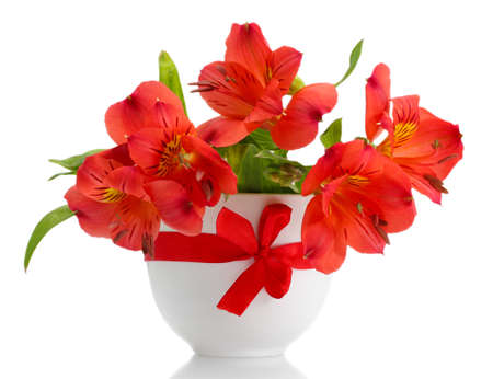 alstroemeria red flowers in vase isolated on white Stock Photo - 17755954