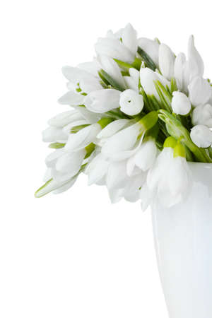snowdrops: beautiful bouquet of snowdrops in vase isolated on white