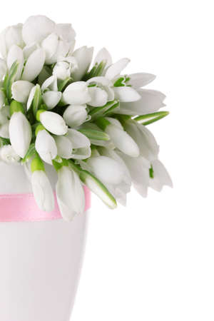 beautiful bouquet of snowdrops in vase isolated on white photo