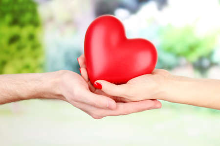 beloved: Red heart in woman and man hands, on green background