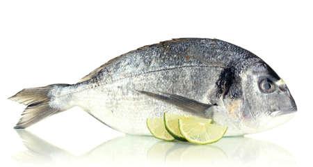 Dorado fish with lemon isolated on white Stock Photo - 17864161