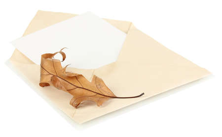 Old envelope with blank paper and leaf isolated on white photo