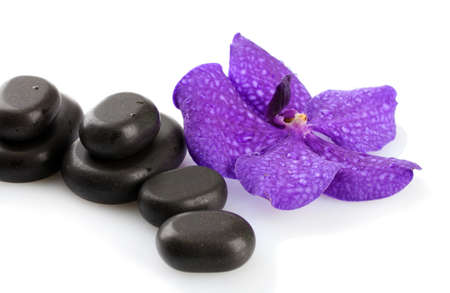 therapy group: Spa stones and purple flower, isolated on white Stock Photo
