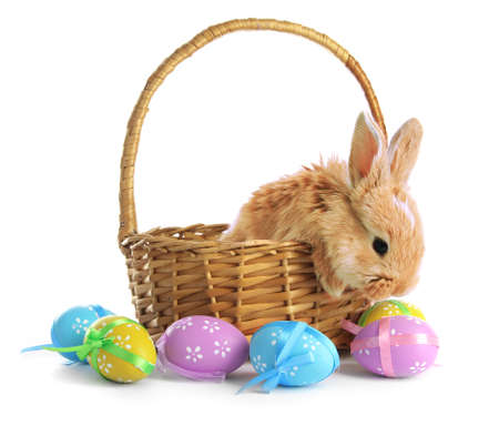 Fluffy foxy rabbit in basket with Easter eggs isolated on white photo