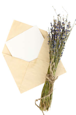 Old envelope with blank paper and lavender isolated on white photo