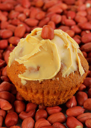 Delicious cake spread with peanut butter on peanuts background close-up Stock Photo - 18526848