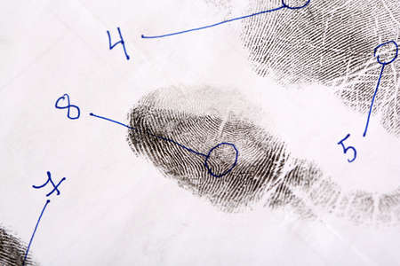 Las huellas dactilares primer plano aislado en blanco