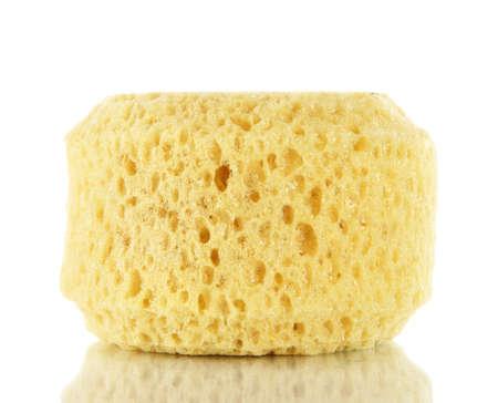 Sponges and sea sponge isolated on white photo