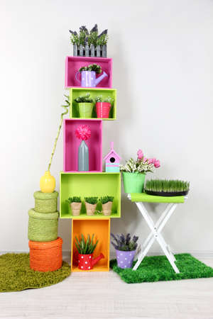 Colorful shelves with decorative elements and plants standing in room Stock Photo - 18610489