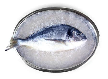 Fresh fish of dorado on tray isolated on white photo