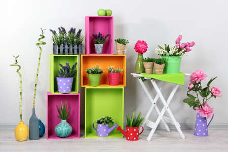 flower pot: Beautiful colorful shelves with decorative elements standing in room
