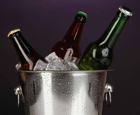 darck: Beer bottles in ice bucket on darck purple background Stock Photo