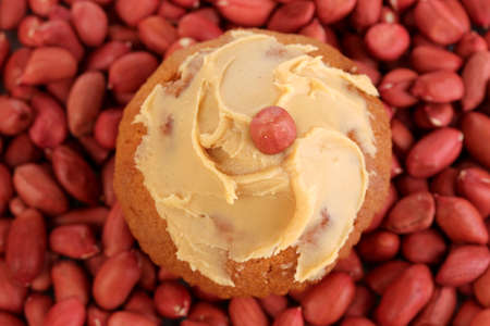 Delicious cake spread with peanut butter on peanuts background close-up Stock Photo - 18776502