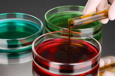 color liquid in petri dishes on grey background Stock Photo - 18801144
