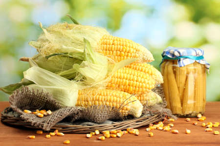 fresh corn, on wooden table, on green background photo
