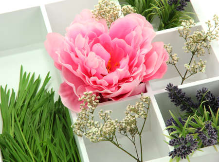 Beautiful flowers arranged in wooden box isolated on white Stock Photo