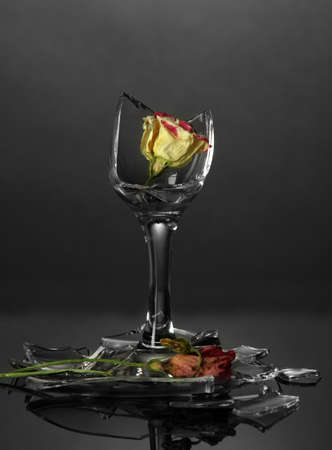 Broken wineglass with dry flower on grey background photo