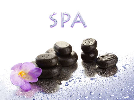 Spa stones and purple flower, isolated on white Stock Photo - 19364769